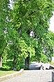 Наводницкий парк в Киеве. Фото 65.jpg