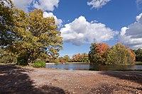 Озерковый парк осенью. Большой круглый пруд. Вид с юго-запада..jpg