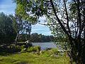 Озеро Шарташ - panoramio (11).jpg