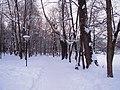 Парк усадьбы Воздвиженское, Серпуховский район.jpg