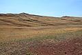 Подъезжая к Козьим горам - panoramio (2).jpg