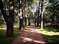 Сад при больнице Ольгиного приюта для детей и женщин В.Б. Перовской.jpg