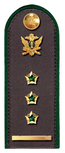 Секретарь ГГС РФ 1 класса ФССП.png