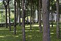 Собственный садик - panoramio (6).jpg