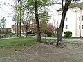 Ужгородський замок-4, Закарпатська обл.jpg