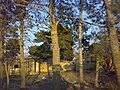 جعفر آباد - panoramio (3).jpg