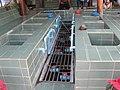 บ่อแช่เท้า วัดวังขนายทายิการาม Foot Spa, Wat Wangkhanaithayikaram - panoramio.jpg