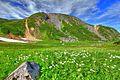 乗鞍岳畳平 - panoramio (13).jpg