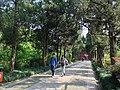 南京明孝陵景区走道 - panoramio (1).jpg