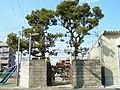堺市美原区真福寺 櫟本神社 Ichiimoto-jinja, Shimpukuji 2012.3.03 - panoramio.jpg