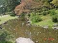 日本德島40.jpg