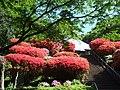 神木山等覚院 - panoramio.jpg