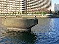 豊洲運河 - panoramio (2).jpg
