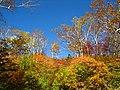 高原の秋空(Autumn sky of plateau) - panoramio.jpg