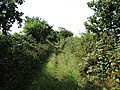 -2018-08-15 Looking southwards along a Footpath in the parish of Gimingham (2).JPG