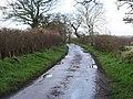 -2021-01-04 Looking west along Corner Common Road, Honing, Norfolk.jpg