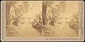 -Group of 66 Stereograph Views of the 1893 Chicago World's Fair and Columbian Exposition- MET DP75536.jpg
