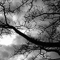 - panoramio - stephenLharlow (3).jpg