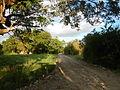 00014jfBulihan Bliss Alido Fields Roads Malolos City Bulacanfvf 21.JPG