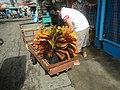 0892Poblacion Baliuag Bulacan 75.jpg