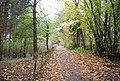 1066 Country Walk, Saxon Wood - geograph.org.uk - 2186822.jpg
