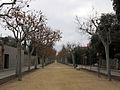 124 El Passeig de la Garriga.JPG