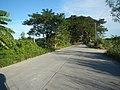 1518Franciso Viola Highway San Rafael Bulacan 04.jpg