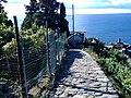 19018 Vernazza, Province of La Spezia, Italy - panoramio (13).jpg