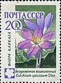 1960 CPA 2495.jpg