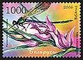 2006. Stamp of Belarus 0663a.jpg