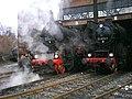 20090321. 1.Dampfloktreffen.-046.jpg