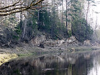 The river Nemunelis. Muoriskiai outcrop