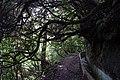 2012-10-26 14-50-59 Pentax JH (49283356346).jpg
