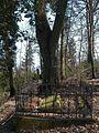 20120324Soldatenfriedhof Spicherer Berg05.jpg