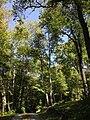 2013-08-25 12 03 52 View northeast near 50 Ridge Road at Spring Lake in Berlin, New York - vertical alignment.jpg