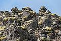 2014-09-16 14-52-20 Iceland Suðurland Skogar Landmannalaugar.jpg