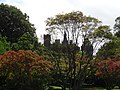 20140817 I13 Cardiff - Castle (14928829840).jpg