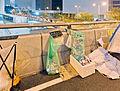 2014 Hong Kong protests DSC0183 (15914760849).jpg