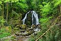 2015-05-06 17-03-48 cascade-goutte-des-saules-plancher-les-mines.jpg