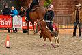 2015-08-23 16-14-57 rallye-equestre.jpg