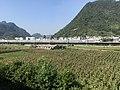 201908 CRH380D on Chongqing-Guiyang Railway in Banqiao, Zunyi.jpg