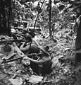 2 5th Bn AIF gun pits in New Guinea August 1943.jpg