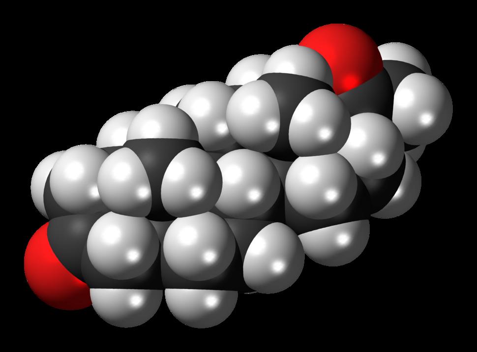 5alpha-Dihydroprogesterone 3D spacefill