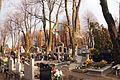 8105vik Cmentarz w Bielawie ul. Żeromskiego. Foto Barbara Maliszewska.jpg