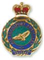 ATA Veteran's Badge.png