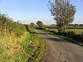 A country road - geograph.org.uk - 574937.jpg