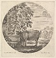A cow in center drinking from a fountain adorned with the Medici coat of arms at left, accompanied by a shepherd standing behind, a round composition, from 'Six animal subjects' (Six sujets d'animaux) MET DP827819.jpg