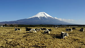 100 Famous Japanese Mountains - Mount Fuji (3,776 m) from Asagiri-kōgen