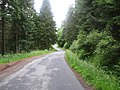 A road through the forest - geograph.org.uk - 1390572.jpg