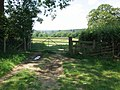 A stile or gate to navigate - geograph.org.uk - 1389352.jpg